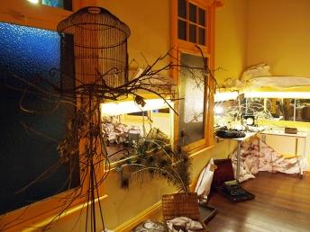 NEST Residency and Showing, indigo eli photo: Royce Kurmelovs