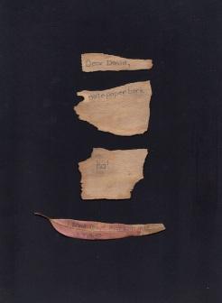 letter no. 12