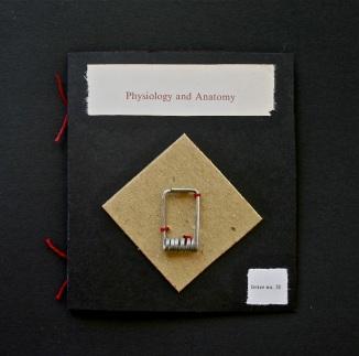 letter no. 31