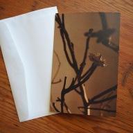 leaving blank card indigo eli